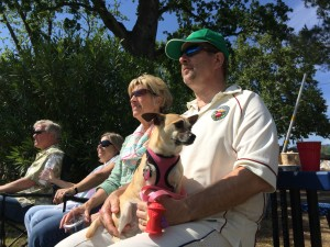 Napa Valley World Series of Cricket spectators